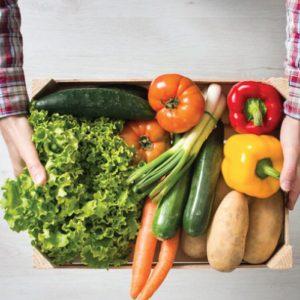 Cuáles son las claves de una alimentación saludable para las 7 edades del ser humano